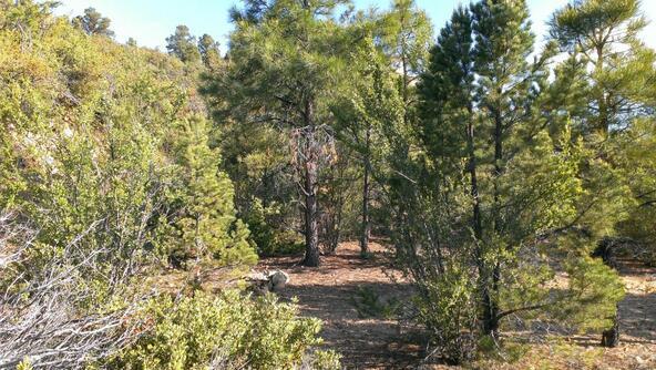 901 S. Skyview Dr., Prescott, AZ 86303 Photo 25