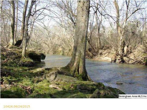 2 Horton Mill Rd., Oneonta, AL 35121 Photo 19