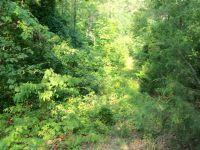 Home for sale: Osage, Alpena, AR 72611