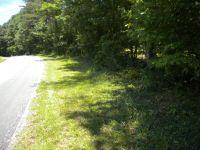 Home for sale: Lot 1 Higginbotham Creek Rd., Amherst, VA 24521