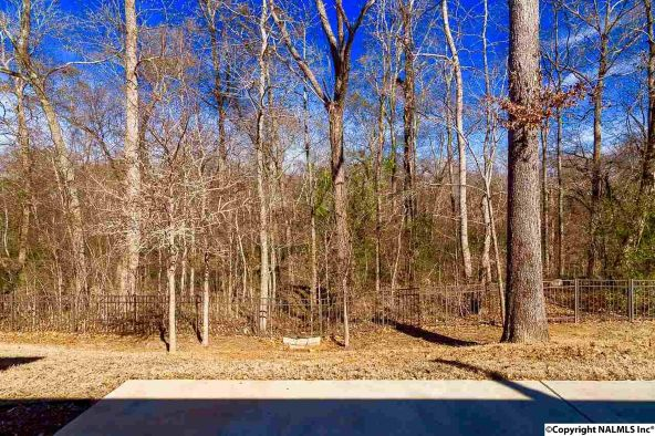 4733 Autumn Dusk Dr., Owens Cross Roads, AL 35763 Photo 7