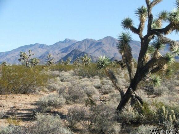 3529-A Arroyo Rd., Yucca, AZ 86438 Photo 12