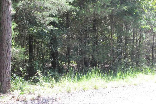 3.5 Acres Ravine Rd. & Mocking Bird Ln., Tumbling Shoals, AR 72581 Photo 4