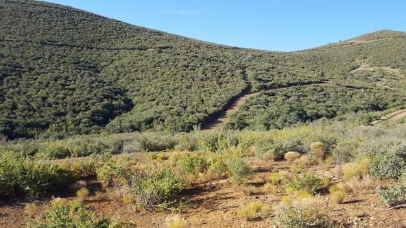 20 Freeport, Dewey, AZ 86327 Photo 93