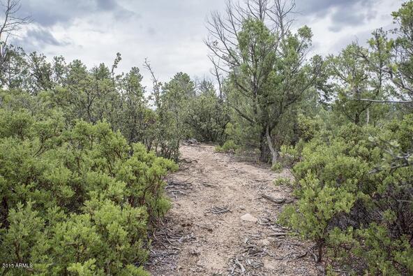 509 N. Chaparral Pines Dr., Payson, AZ 85541 Photo 29