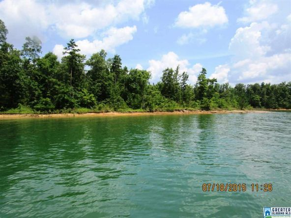 90 Stoney Point Landing, Double Springs, AL 35553 Photo 8