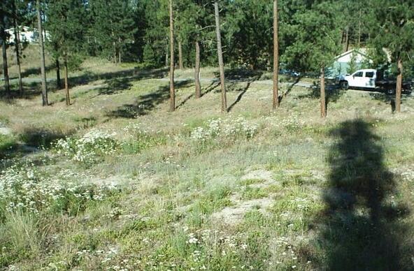 1269 Ruffed Grouse Way, Kettle Falls, WA 99141 Photo 16