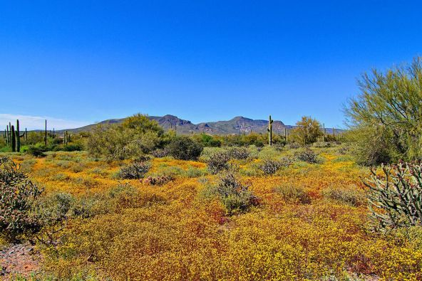 40655 N. 60th St., Cave Creek, AZ 85331 Photo 94