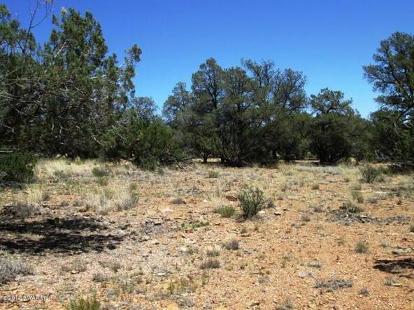 87 Stockmans Rd., Ash Fork, AZ 86320 Photo 3