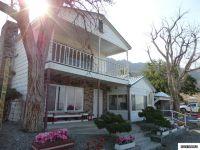 Home for sale: 347 Golden Willow Dr., Walker Lake, NV 89415
