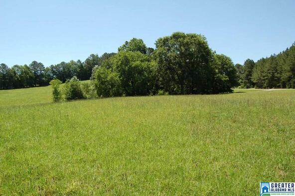 1.5 Acres Hwy. 431, Wedowee, AL 36278 Photo 6