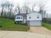 Home for sale: 2032 Fairbanks Ln., Festus, MO 63028