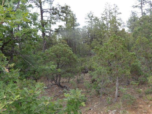 2125 S. Pleasant View Dr., Show Low, AZ 85901 Photo 2