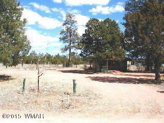 2903 Holiday Forest Dr., Overgaard, AZ 85933 Photo 5