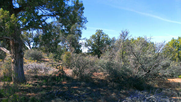13985 N. Spotted Eagle Dr., Prescott, AZ 86305 Photo 13