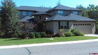 Home for sale: 3932 Mt Hayden Dr., Montrose, CO 81403