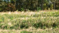 Home for sale: 0-Lot 18 1100 North, Demotte, IN 46310