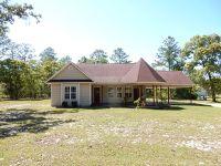 Home for sale: 252 Baker Hill Rd., Hortense, GA 31543