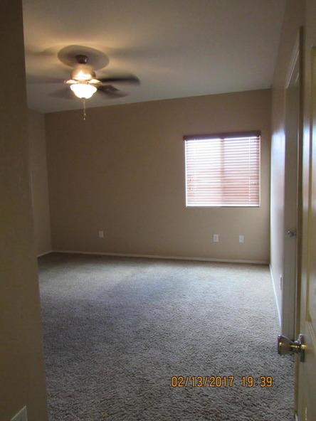 8316 W. Razorbill, Tucson, AZ 85757 Photo 9