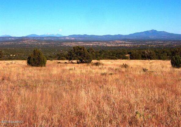 130 Bunny View, Ash Fork, AZ 86320 Photo 2