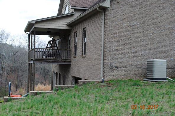 331 Cr 586, Rogersville, AL 35652 Photo 21