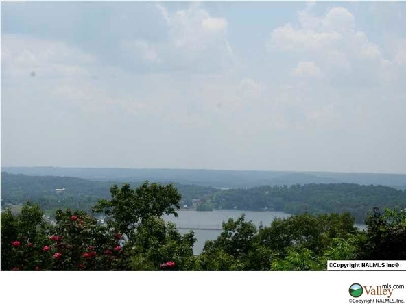 Ridgefield Cir., Guntersville, AL 35976 Photo 8