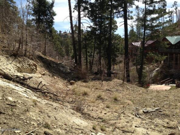 11081 E. Turkey Run, Mount Lemmon, AZ 85619 Photo 6