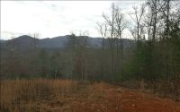 Home for sale: Lt 5 Brannon Ridge Res, Blairsville, GA 30512