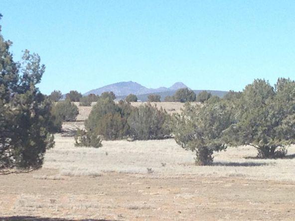 246 Antelope Run, Ash Fork, AZ 86320 Photo 6