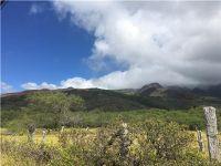 Home for sale: 0000 Kamehameha V Hwy., Kaunakakai, HI 96748