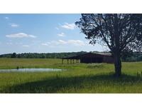 Home for sale: 255 Baileyton Main St., Greeneville, TN 37745