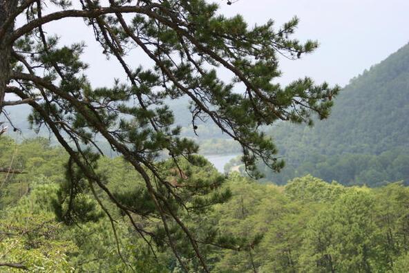 Mount Pleasant Rd., Vonore, TN 37885 Photo 9