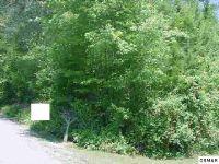 Home for sale: 926 Stinnett Ridge Rd., Cosby, TN 37722