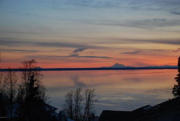 18653 Harlequin Pl., Anchorage, AK 99516 Photo 33