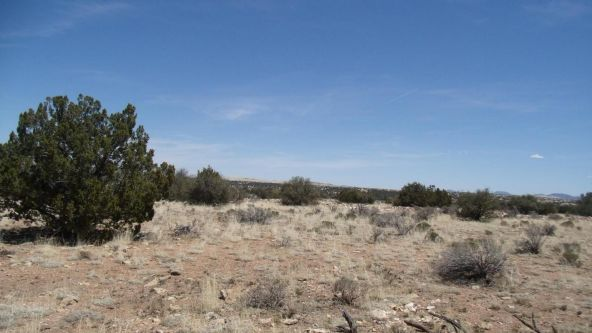 6376 W. Fire Sky Trail, Williams, AZ 86046 Photo 8