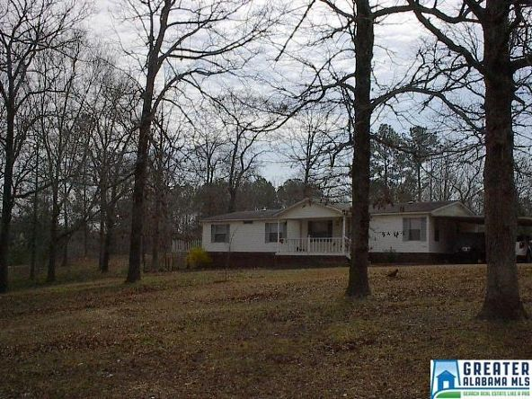 41 Norton Rd., Sylacauga, AL 35151 Photo 33