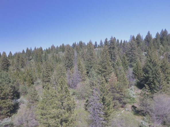 Lot 6 Forest Highlands, Boise, ID 83716 Photo 16