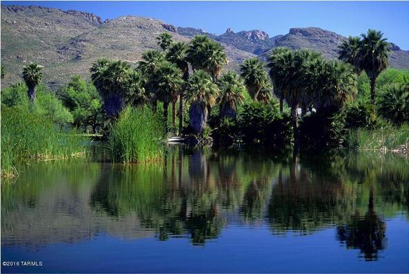 12441 E. Fireweed, Tucson, AZ 85749 Photo 9