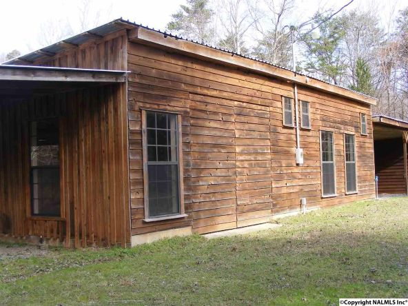 9416 County Rd. 103, Mentone, AL 35984 Photo 36
