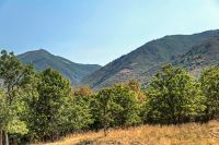 Home for sale: 75 E. Deer Meadow Lot 95, Woodland Hills, UT 84653
