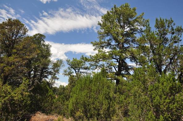 3146 Ranch Rd., Overgaard, AZ 85933 Photo 10