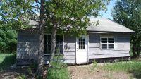 Home for sale: 3982 Wurm Rd., Wolverine, MI 49799