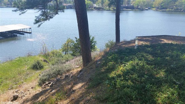 90 Cliff Loop, Hot Springs, AR 71913 Photo 9