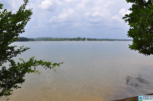 1015 River Oaks Dr., Cropwell, AL 35054 Photo 49