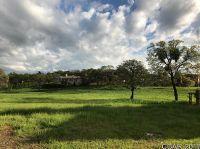 Home for sale: 174 Blue Oak Ct., Copperopolis, CA 95228