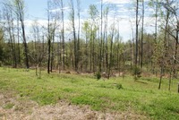 Home for sale: 0 Elm Grove Rd., Burlison, TN 38015