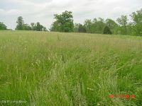 Home for sale: 0 Campbell Rd., Ghent, KY 41045