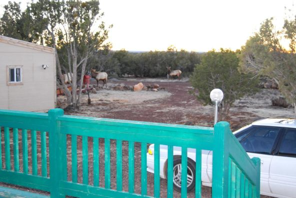 7944 Marken Ranch Rd., Show Low, AZ 85901 Photo 45