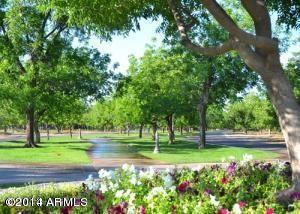 20281 E. Via de Arboles --, Queen Creek, AZ 85142 Photo 3