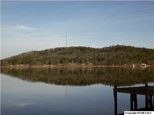 160 County Rd. 917, Leesburg, AL 35983 Photo 17